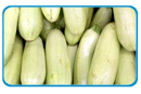 witte courgette